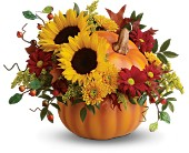 Teleflora's Pretty Pumpkin Bouquet in Quincy MA, Quint's House Of Flowers
