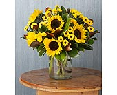 Sunflower Medley in Bradenton FL, Ms. Scarlett's Flowers & Gifts