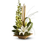 Teleflora's Bamboo Serenity in Fort Worth TX, Greenwood Florist & Gifts