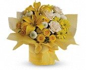 Teleflora's Sunshine Surprise Present in Orlando FL, Elite Floral & Gift Shoppe