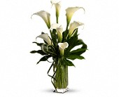 My Fair Lady by Teleflora in Bellefontaine OH, A New Leaf Florist, Inc.