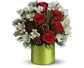 Teleflora's Christmas Cheer Bouquet in Milford MA, Francis Flowers, Inc.