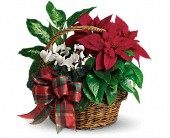 Holiday Homecoming Basket in Beaumont TX, Blooms by Claybar Floral