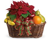 Fruit and Poinsettia Basket in Waldron AR, Ebie's Giftbox & Flowers