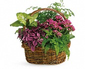 Secret Garden Basket in Holladay UT, Brown Floral