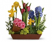 Spring Favorites in Bridge City TX, Wayside Florist