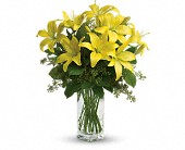 Teleflora's Lily Sunshine in Bakersfield CA, All Seasons Florist