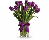 Passionate Purple Tulips in Darlington WI, A Vintage Market Floral