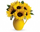 Teleflora's Sunny Day Pitcher of Sunflowers in Alvarado TX, Remi's Memories in Bloom