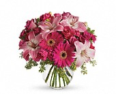 A Little Pink Me Up in Asheville NC, Merrimon Florist Inc.