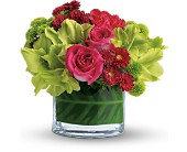Teleflora's Beauty Secret in Highlands Ranch CO, TD Florist Designs