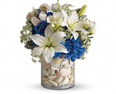 Everything's Beachy by Teleflora in San Clemente CA, Beach City Florist