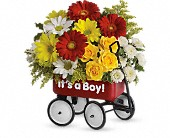 Baby's Wow Wagon by Teleflora - Boy in Kenosha WI, Strobbe's Flower Cart