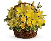 Basket Full of Wishes in Eastchester NY, Roberts For Flowers