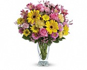 Teleflora's Dazzling Day Bouquet in Stettler AB, Panda Flowers