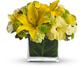 Oh Happy Day by Teleflora in Norwalk OH, Henry's Flower Shop