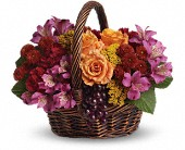 Sending Joy in Lansdale PA, Genuardi Florist
