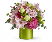 Fancy Flowers by Teleflora in Bothell WA, The Bothell Florist
