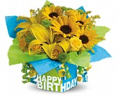 Teleflora's Sunny Birthday Present in Traverse City MI, Cherryland Floral & Gifts, Inc.