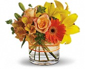 Sunny Siesta in Fort Washington MD, John Sharper Inc Florist