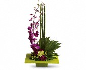 Zen Artistry in Surrey BC, Oceana Florists Ltd.