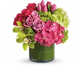 New Sensations in Washington DC, N Time Floral Design