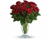 Teleflora's Rose Classique - Dozen Red Roses in Darlington WI, A Vintage Market Floral