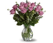 Lavender Wishes - Dozen Premium Lavender Roses in Peoria, Illinois, Flowers & Friends Florist