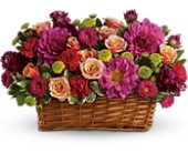 Burst of Beauty Basket in Tempe AZ, Bobbie's Flowers