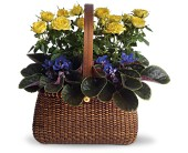 Garden To Go Basket in Darlington WI, A Vintage Market Floral