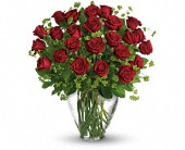 My Perfect Love - Long Stemmed Red Roses in Bluffton IN, Posy Pot