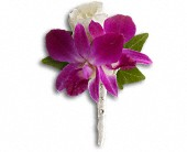 Fresh in Fuchsia Boutonniere in Bradenton FL, Tropical Interiors Florist