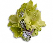 Soft Green Glamour Wristlet in Oakville ON, Oakville Florist Shop