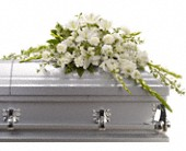 Bountiful Memories Casket Spray in New Berlin WI, Twins Flowers & Home Decor