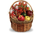 Health Nut Basket in Waukegan IL, Larsen Florist