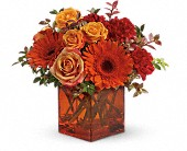 Teleflora's Sunrise Sunset in Milford MA, Francis Flowers, Inc.