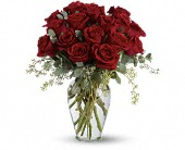 Full Heart - 16 Premium Red Roses in Mississauga ON, Mums Flowers