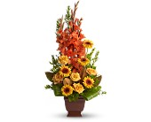 Teleflora's Sentimental Dreams in Cleveland OH, Filer's Florist Greater Cleveland Flower Co.