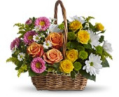 Sweet Tranquility Basket in Lewiston, Maine, Val's Flower Boutique, Inc.