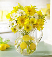 1800Flowers Make Lemonade in a Pitcher in Woodbridge VA, Lake Ridge Florist