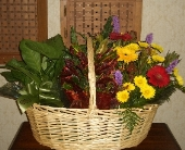 Plant Basket w/Fresh Flowers in Kentwood LA, Glenda's Flowers & Gifts, LLC