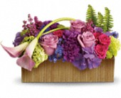 <br>Teleflora's Ticket to Paradise in Thornhill, Ontario, Orchid Florist