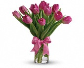 Precious Pink Tulips in Lowell MA, Wood Bros Florist