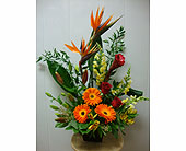 Bright Tropics in Maple ON, Jennifer's Flowers & Gifts