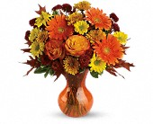 Teleflora's Forever Fall in Scobey MT, The Flower Bin
