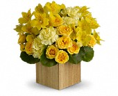 Teleflora's Sunshine Chic in Bothell WA, The Bothell Florist