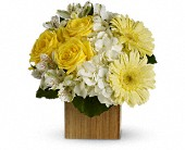 Teleflora's Pure Bliss in Hoboken NJ, All Occasions Flowers