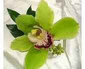 Green Cymbidium Orchid Boutonniere with Greens in Smyrna GA, Floral Creations Florist