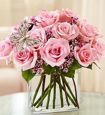 Modern Roses - One Dozen Pink in Highlands Ranch CO, TD Florist Designs