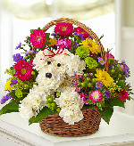 A-dog-able in a basket in Sayville NY, Sayville Flowers Inc